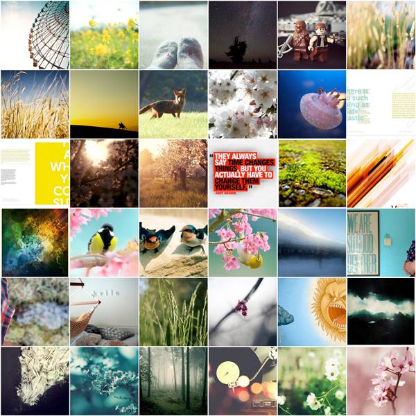 flickr-faves-block01