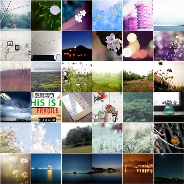 flickr-faves-block02